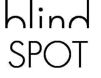 BlindSpot Marketing